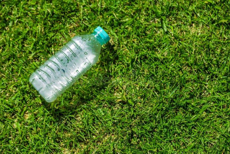 Liten kallt vattenflaska som lägger på grönt gräs- fält på en varm su fotografering för bildbyråer