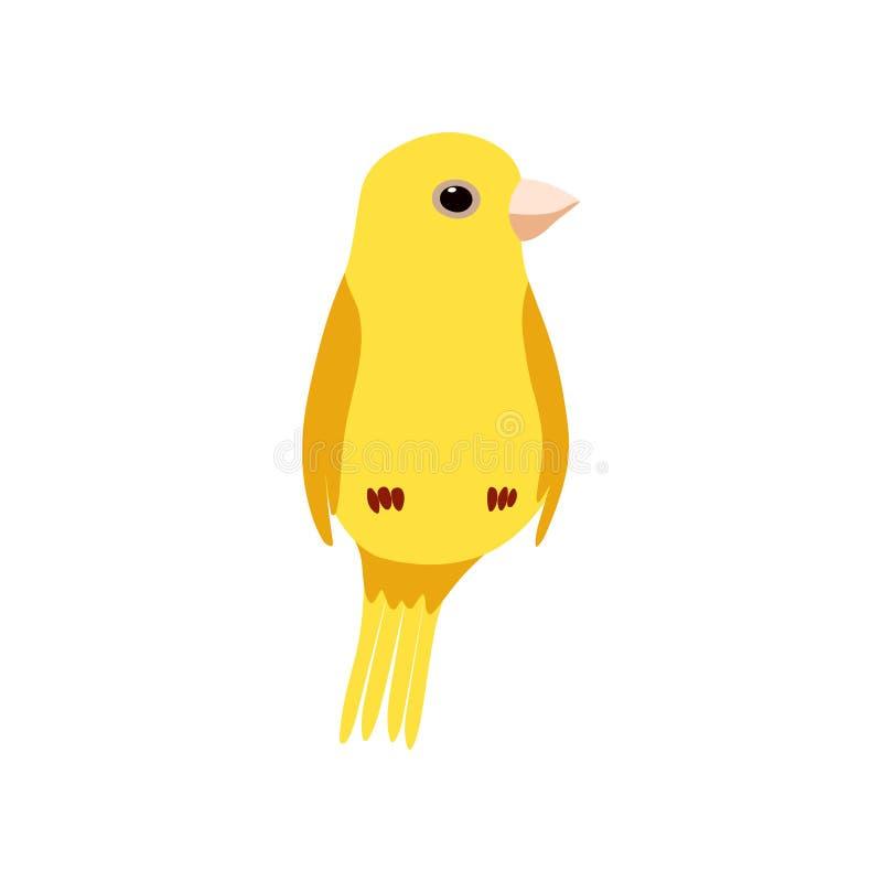 Liten kanariefågelfågel, gullig gul illustration för Budgie hem- husdjurvektor stock illustrationer