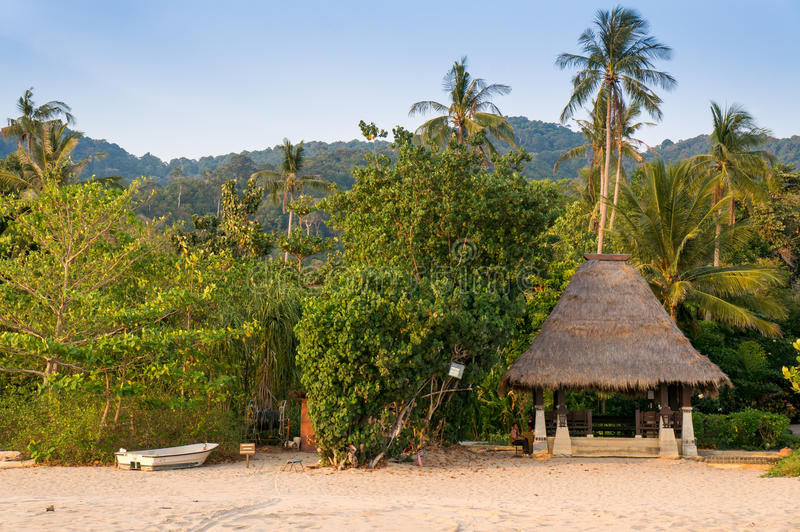 Liten koja med det halmtäckte taket i djungeln på stranden arkivbild