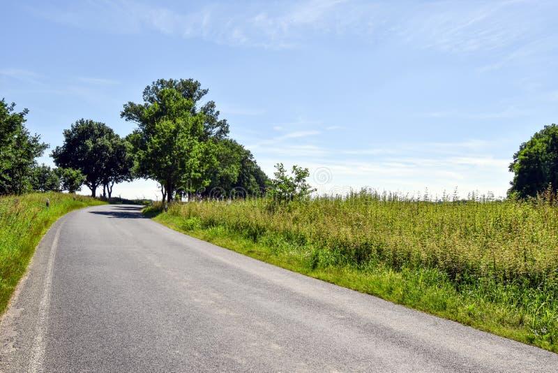 Liten landsväg i den Mecklenburg-Vorpommern Tyskland arkivfoton