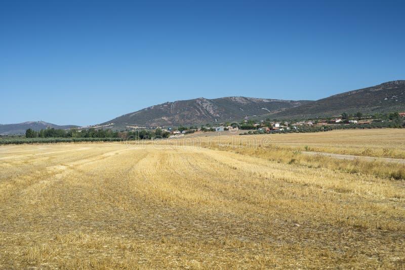 Liten liten by i La Mancha, Spanien arkivbild