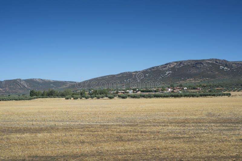 Liten liten by i La Mancha, Spanien fotografering för bildbyråer