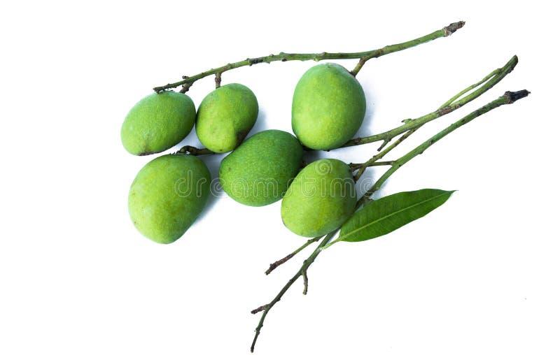 Liten mango och bakgrund arkivfoton