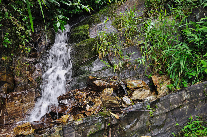 Liten naturlig vattenfall royaltyfria foton