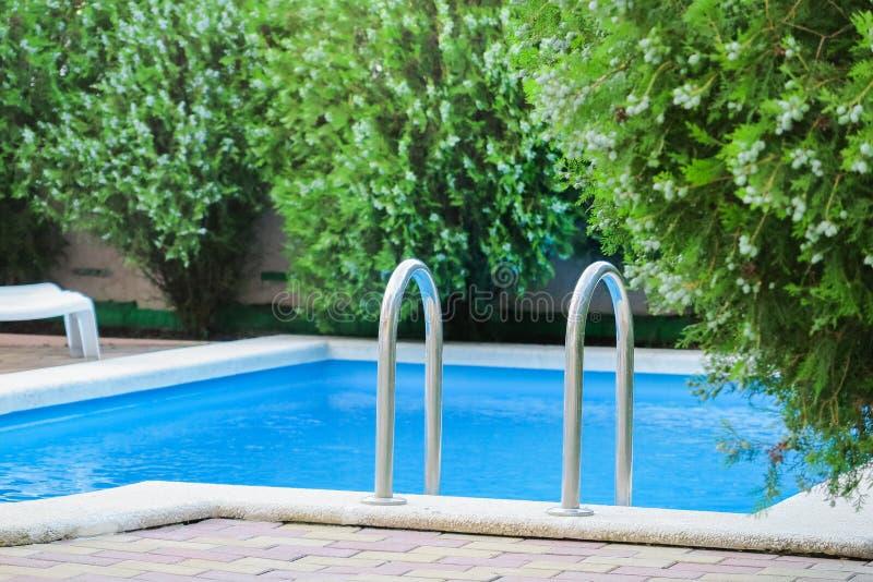 Liten pöl med rent vatten i gården som omges av grönska, tid för simning och gyckel arkivbild