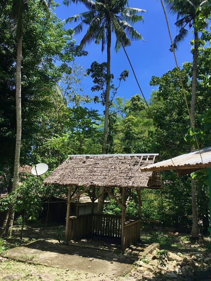 Liten paviljong i den filippinska djungeln som göras av bambu som omges av palmträd, Mindoro, Filippinerna arkivbild