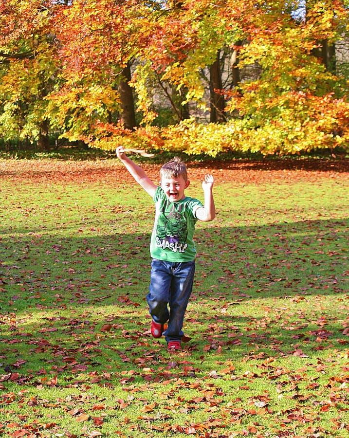 Liten pojke som spelar i höstnedgångskogsmarken som skrattar och ler Oktober 2015 arkivbild
