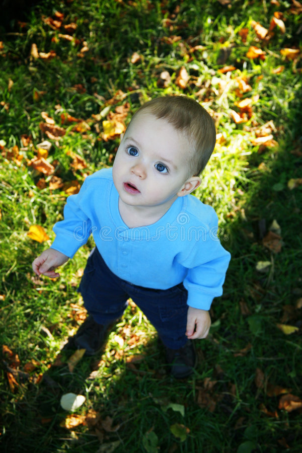 liten pojke utomhus royaltyfri foto