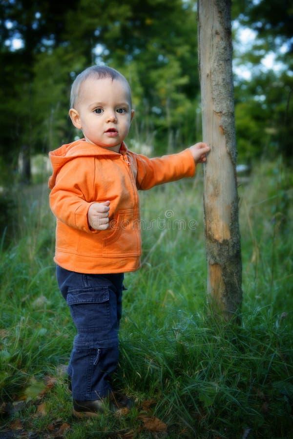 liten pojke utomhus arkivfoto