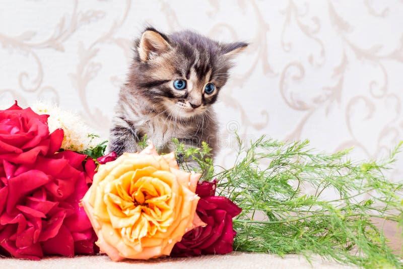 Liten randig kattunge med en bukett av blommor Lyckönskan royaltyfri foto
