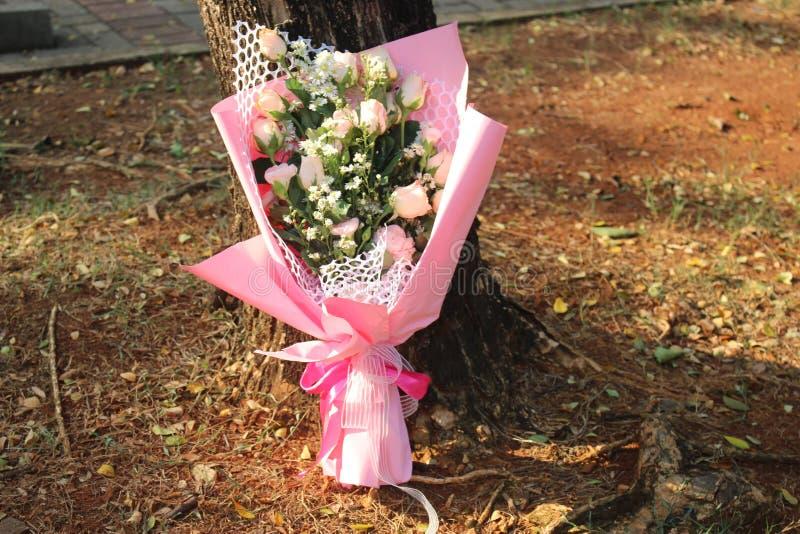 Liten rosa ängel under solen royaltyfria bilder