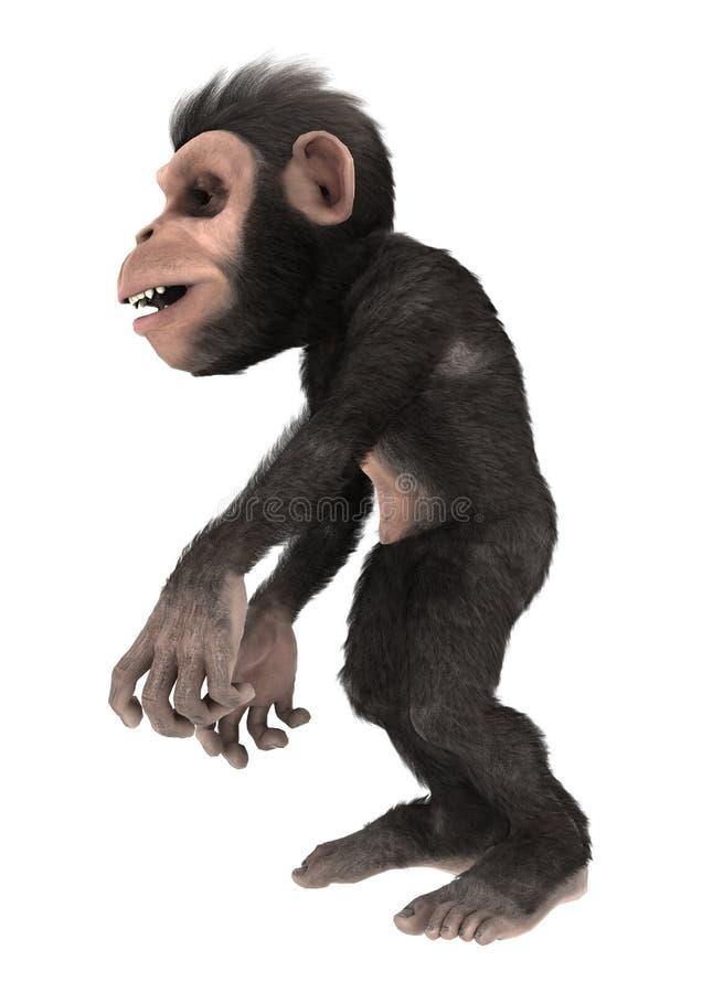 Liten schimpansapa på vit royaltyfri illustrationer
