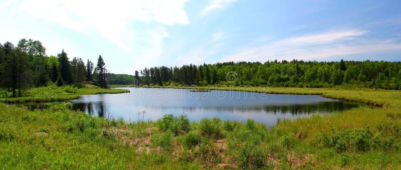Liten sjö/damm i Whiteshell Provincialpark i Kanada/Manitoba arkivfoton