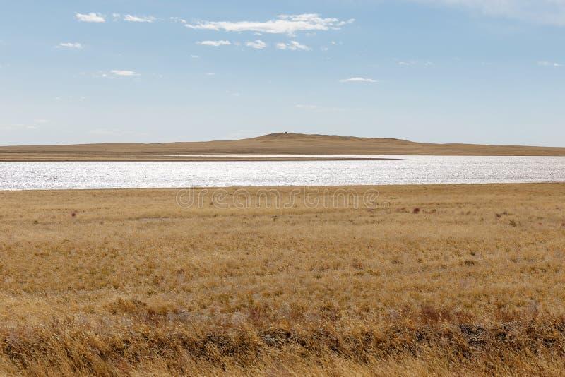 Liten sjö i den mongolian stäppen arkivfoton