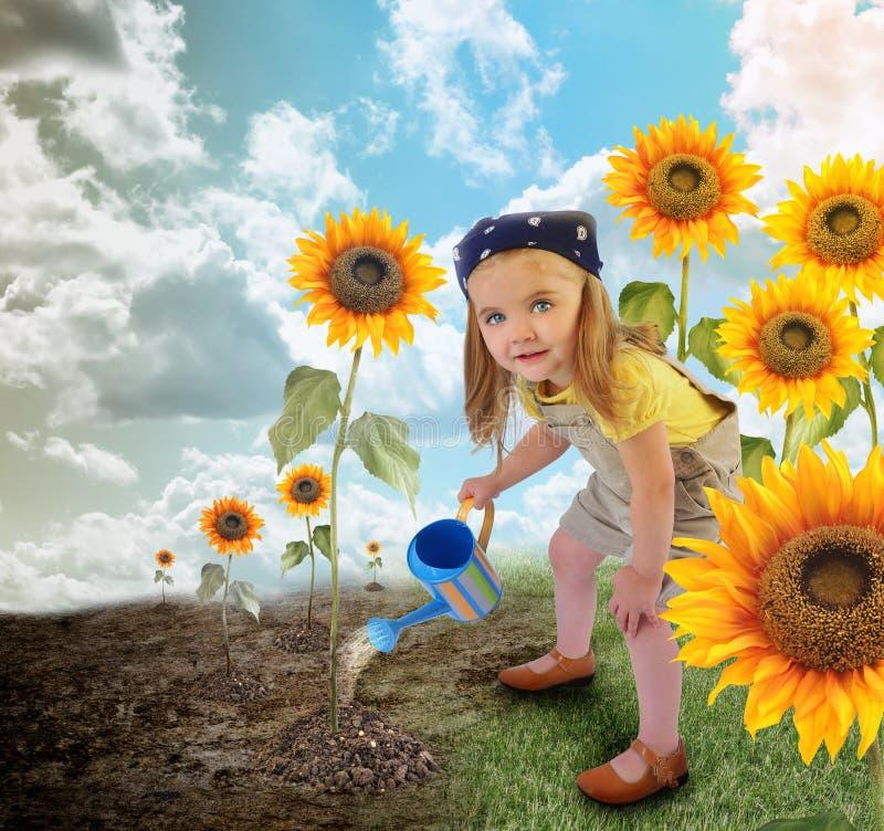 Liten solrosträdgårdsmästare Girl i natur arkivfoton