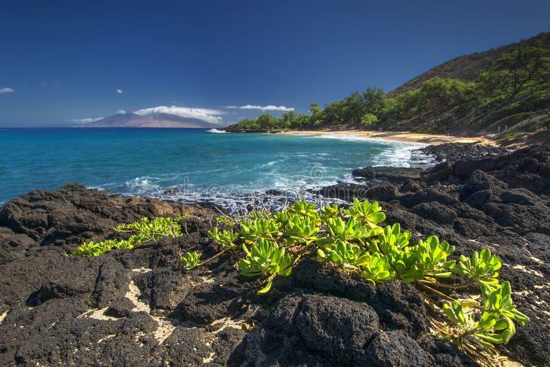 Liten strand, Makena State Park, södra Maui, Hawaii, USA arkivbilder