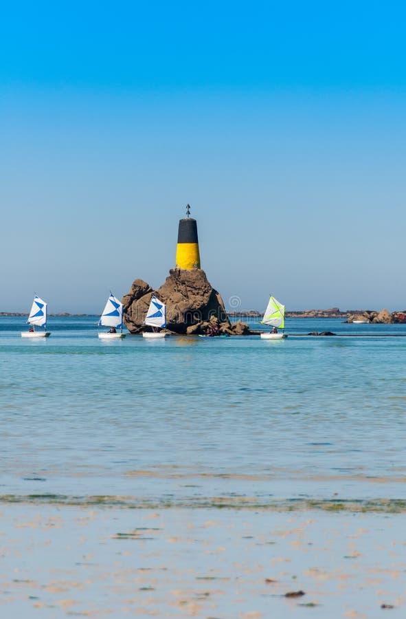 Liten tävlings- segelbåt i grupp fotografering för bildbyråer