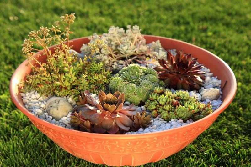 liten trädgårds- rock arkivfoton
