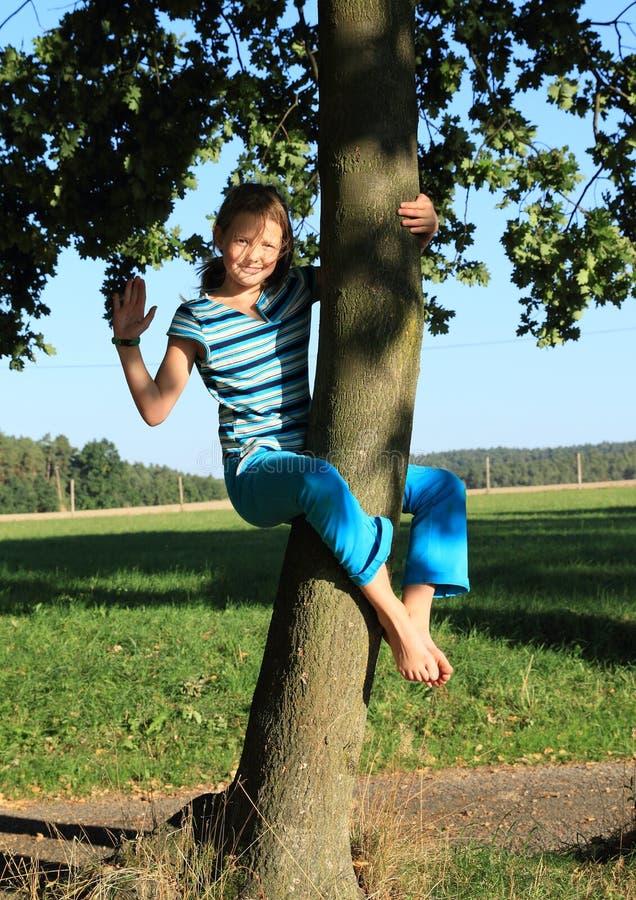 Liten unge - flicka som hänger på stammen royaltyfri foto