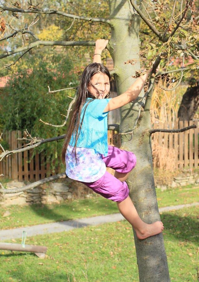 Liten unge - flickaklättring på träd arkivbilder