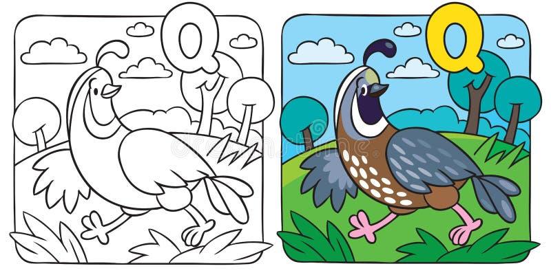 Liten vaktelfärgläggningbok alfabet q stock illustrationer