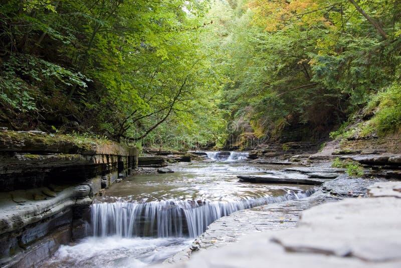 Download Liten vattenfall arkivfoto. Bild av flöde, leaves, park - 521338
