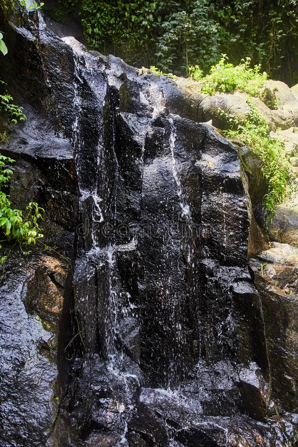 Liten vattenfall i en skog i Bali, Indonesien med en mini- vattenfall royaltyfri foto