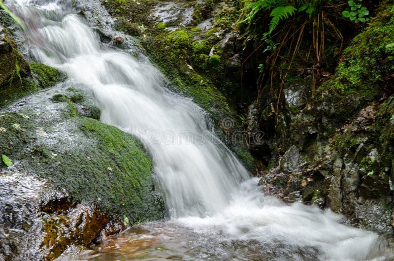 Liten vattenfall på Tarn Hows arkivbilder