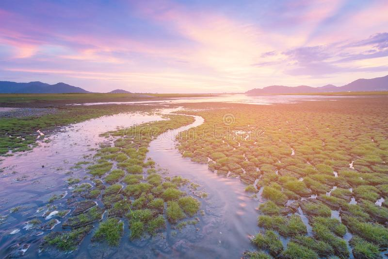 Liten vattenväg över sprucken jordning med skönhet av solnedgånghimmel fotografering för bildbyråer