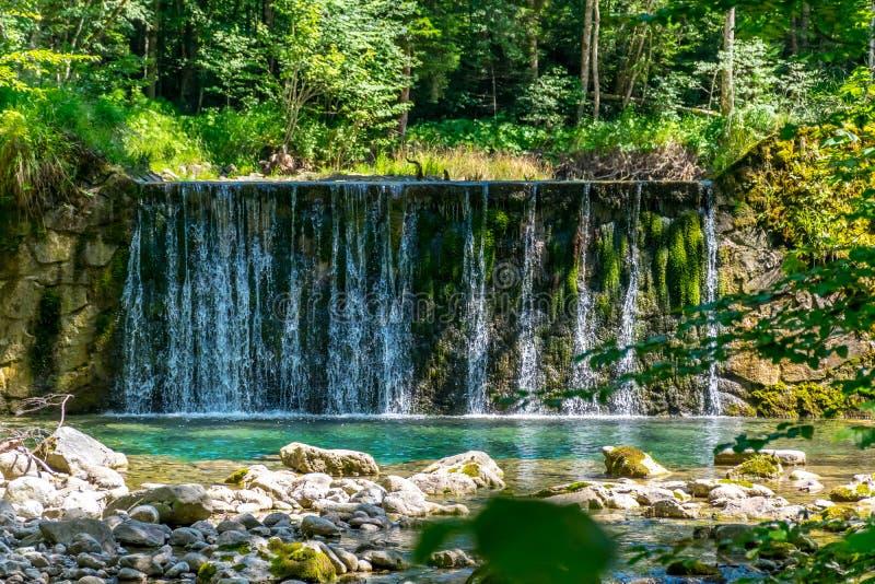 Liten vertikal vattenfall i skogen under solsken arkivfoto