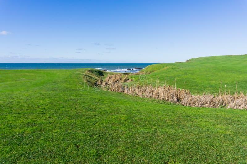 Liten vik på kusten av Stilla havet - gå till och med en grön äng, Half Moon Bay, Kalifornien fotografering för bildbyråer