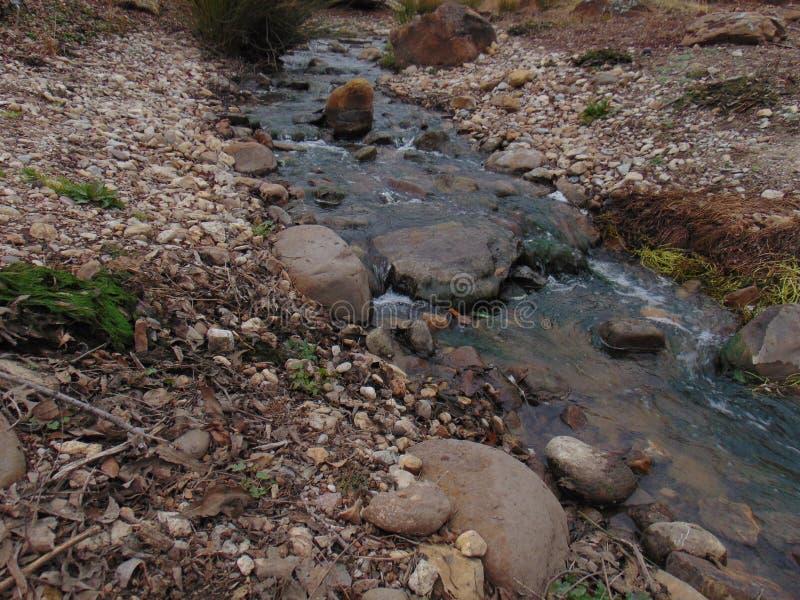 Liten liten vik som passerar stenig flodbädd fotografering för bildbyråer