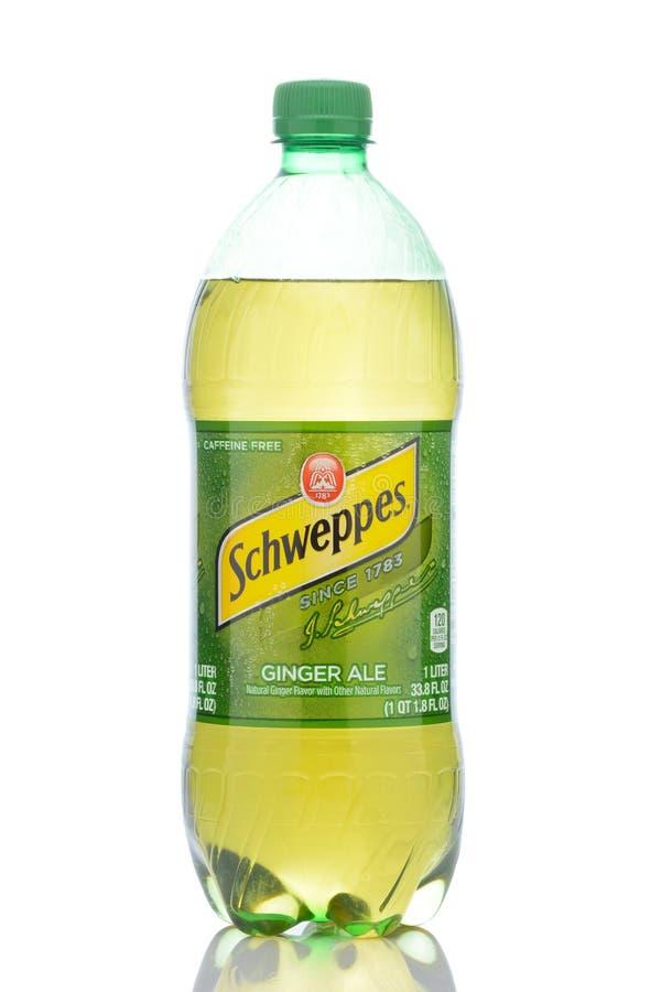 1 liter en plast- flaska av Schweppes Ginger Ale royaltyfria bilder