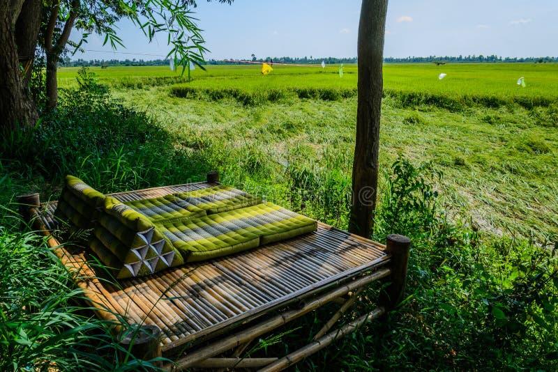 Litera de bambú en campo del arroz foto de archivo