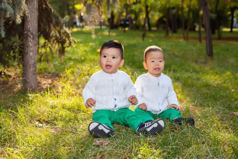 Litet asiatiskt barn som två spelar i parkera som sitter på gräset royaltyfria bilder