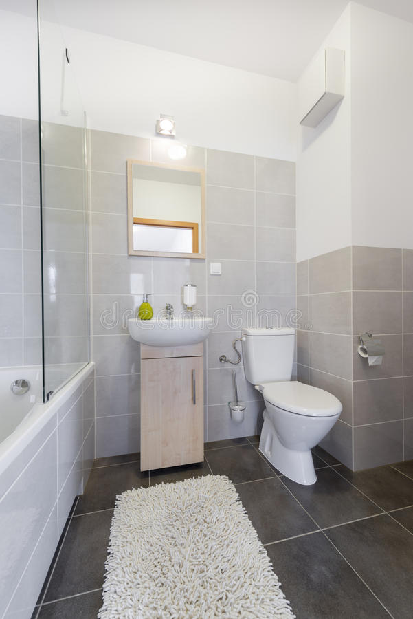 Litet badrum i scandinavian stil arkivfoto