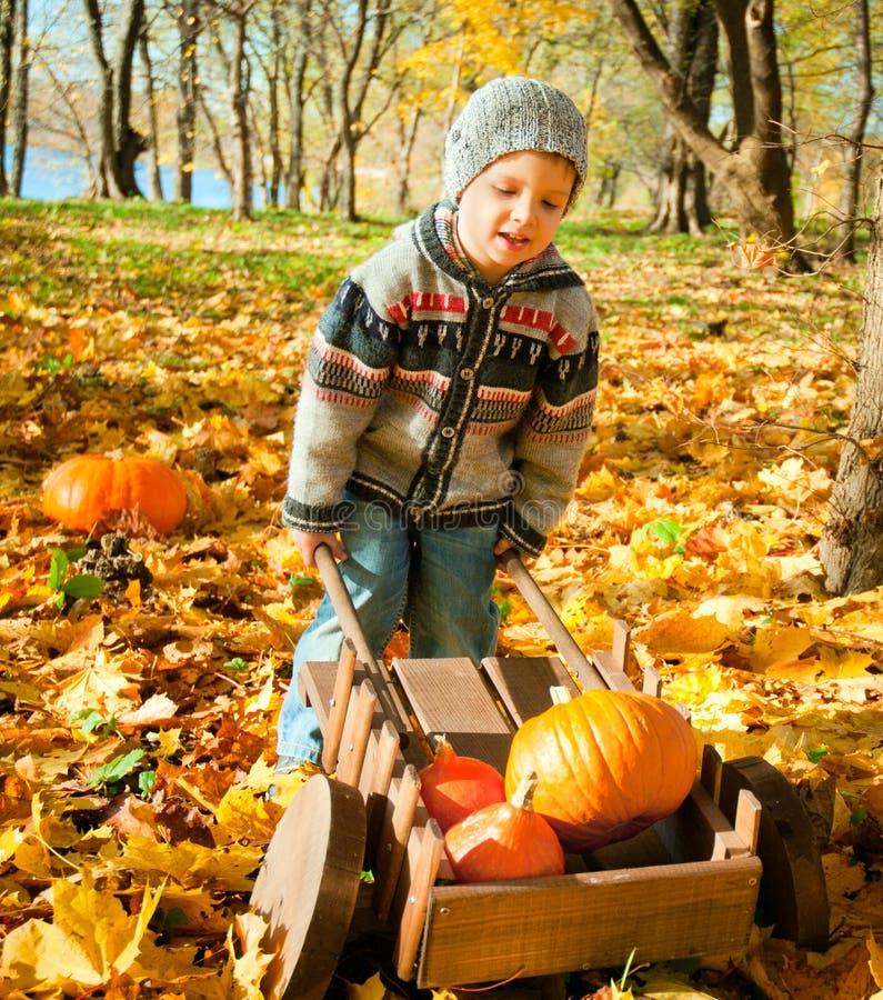 Download Litet Barn Med En Skottkärra Arkivfoto - Bild av leaves, holding: 27282846