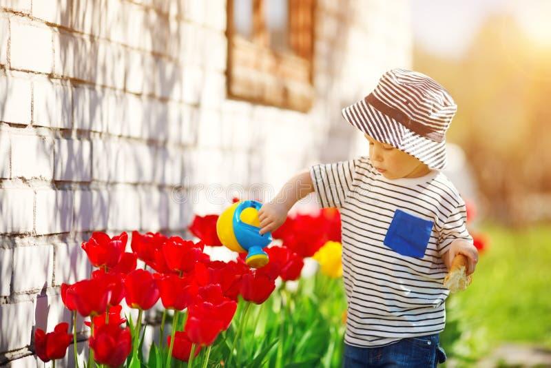 Litet barn som går nära tulpan på rabatten i härlig vårdag arkivbilder