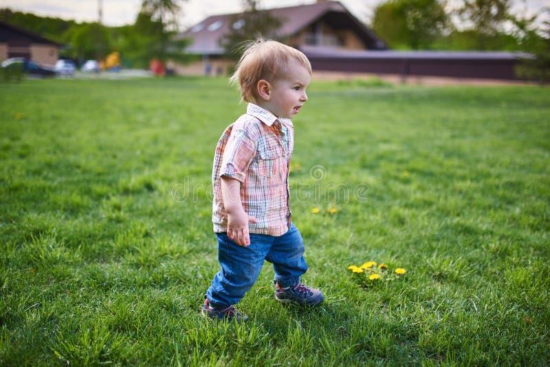 Litet barn som går på den gröna gräsmattan på den soliga dagen royaltyfri fotografi