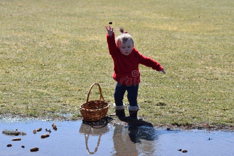 Litet barnflicka som kastar pinecones arkivfoton