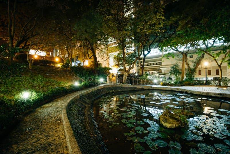 Litet damm och moderna byggnader på natten, från Hong Kong Univers royaltyfria bilder