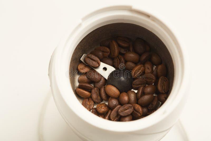 Litet elektriskt kaffe mil med grillade bönor arkivbilder