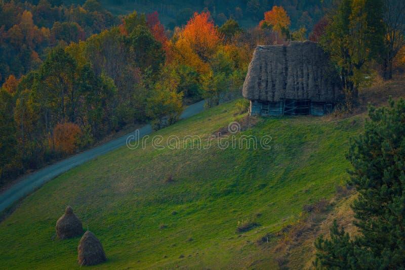 Litet forntida ladugårdhus på en kulle med förbigå för en väg och höstackar i förgrunden med en skog i bakgrunden arkivbild