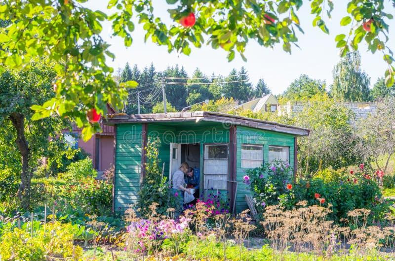 Litet gammalt träträdgårdhus i sommardag royaltyfria foton