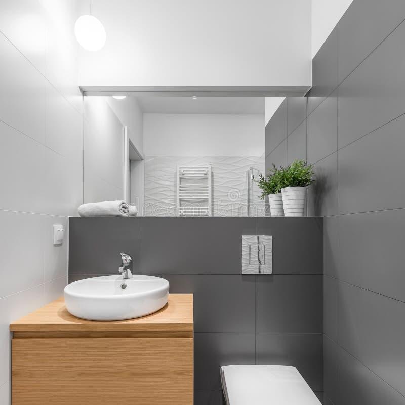Litet gr?tt och vitt badrum royaltyfria foton