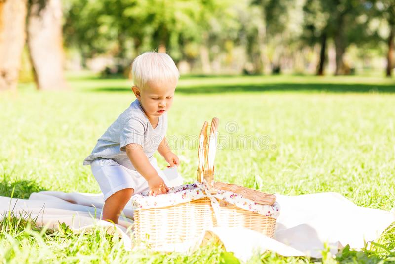 Litet gulligt barn som har en picknick i parkera royaltyfri fotografi