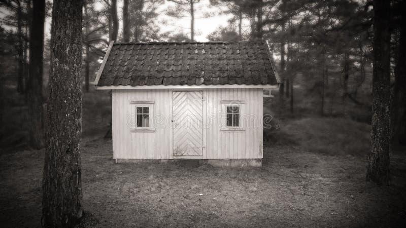 Litet hus i skogen royaltyfria bilder
