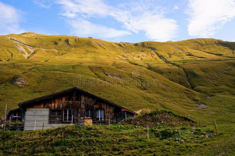 Litet hus och det gröna fältet med berget som bakgrund arkivbilder