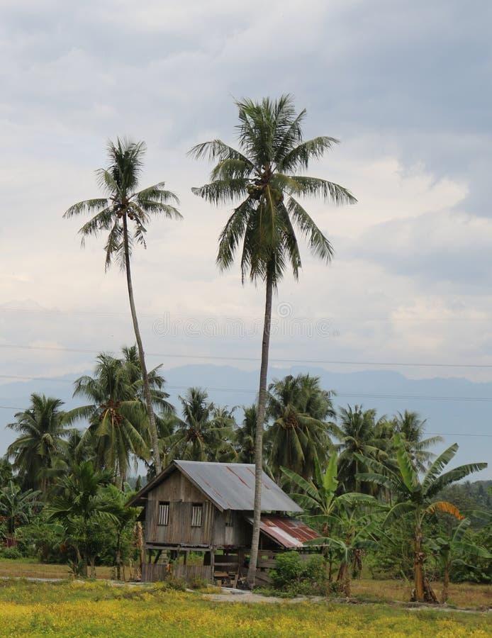 Litet hus på en risfält- och fisklantgård arkivbild