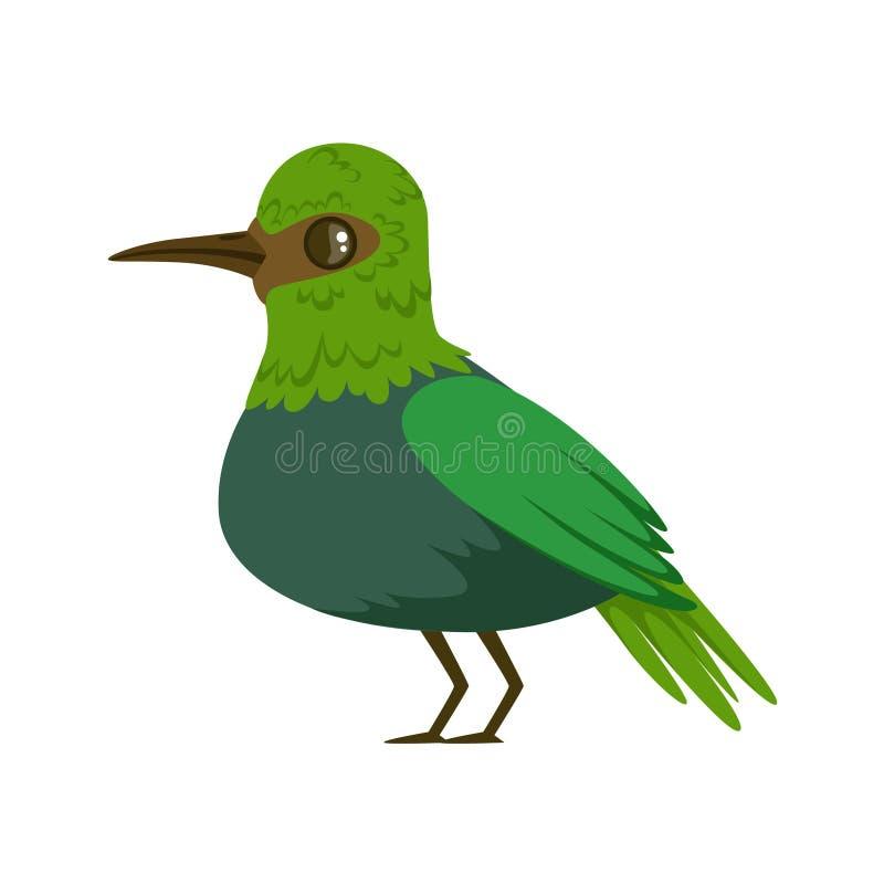 Litet ljust - färgrik vektorillustration för grön tropisk fågel stock illustrationer
